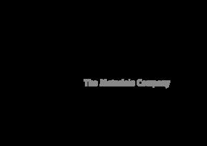 Metamark Logo